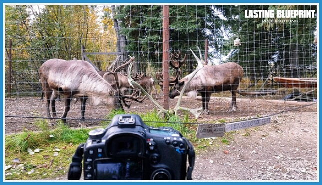 chena indian travel videographer equipment tips village caribou alaska - 5 Travel Videographer Equipment Tips For You!